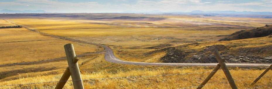 prairie7